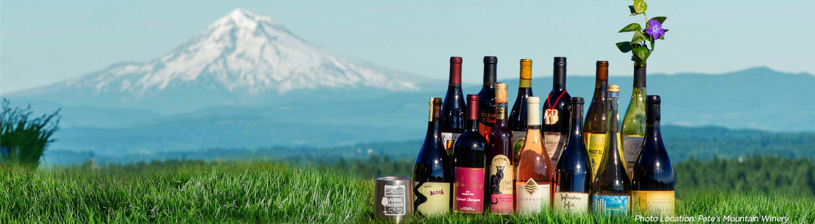 Collection of wine bottles from Mt. Hood Territory wineries staged outdoors on grass with snow covered Mt. Hood in background