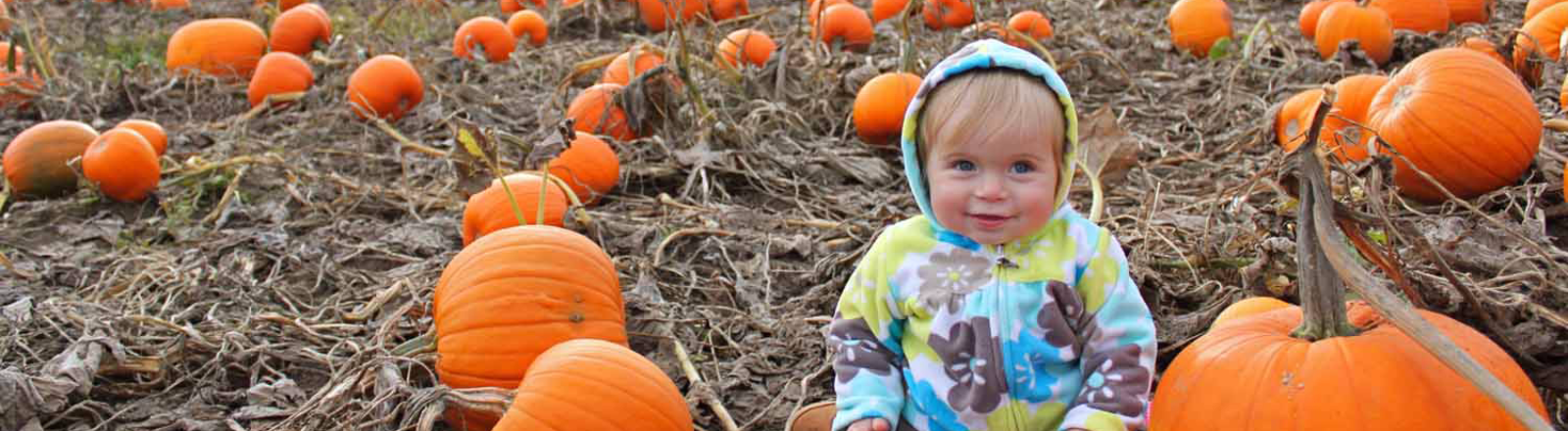 Toddler hanging out with pumpkins